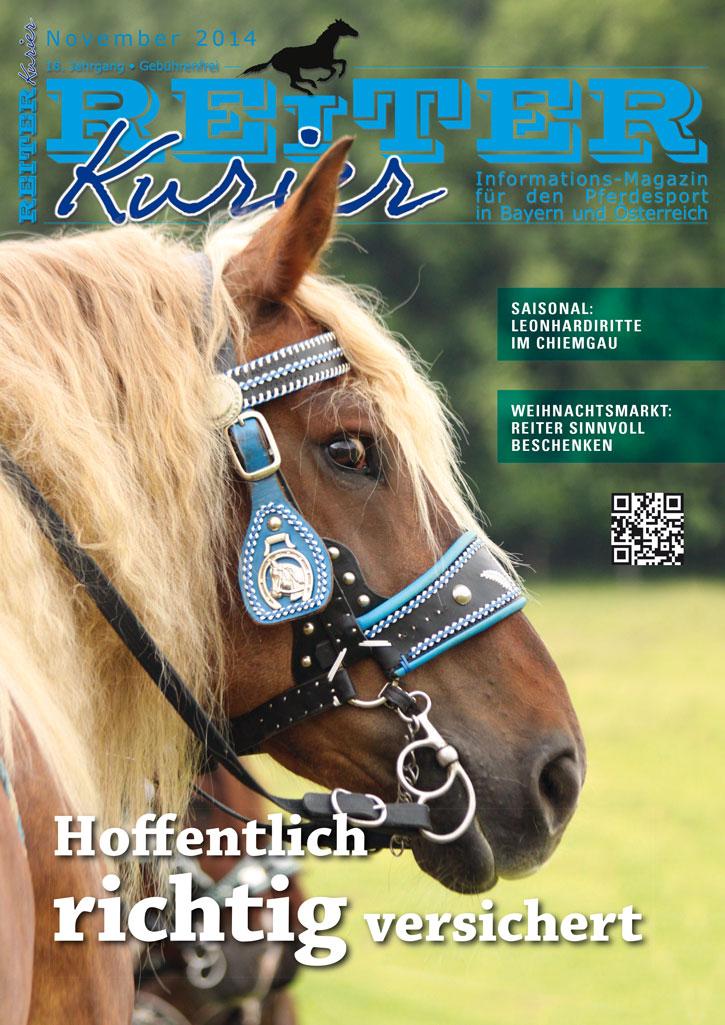 Ausgabe November 2014