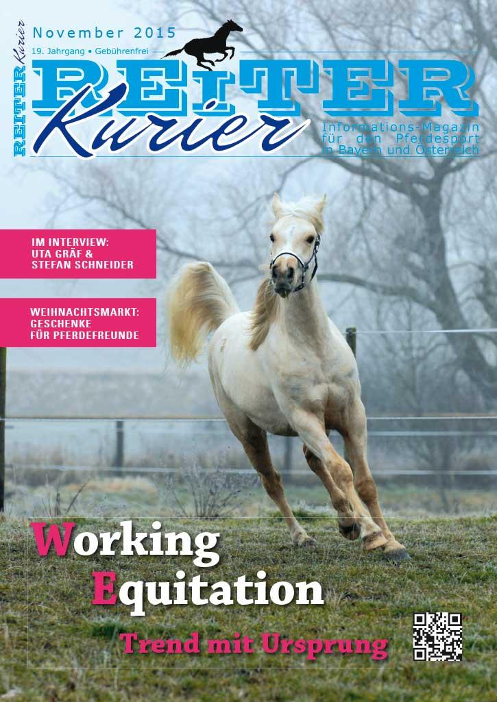 Ausgabe November 2015