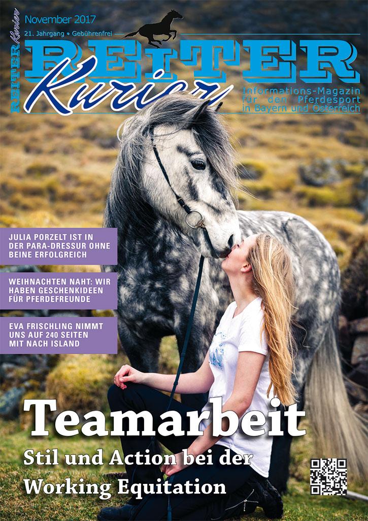 Ausgabe November 2017