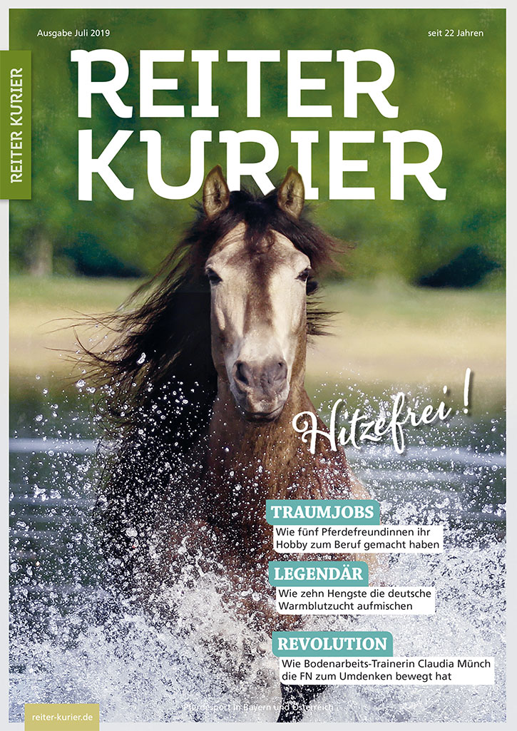 Ausgabe Juli 2019