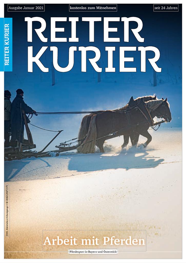 Ausgabe Januar 2021